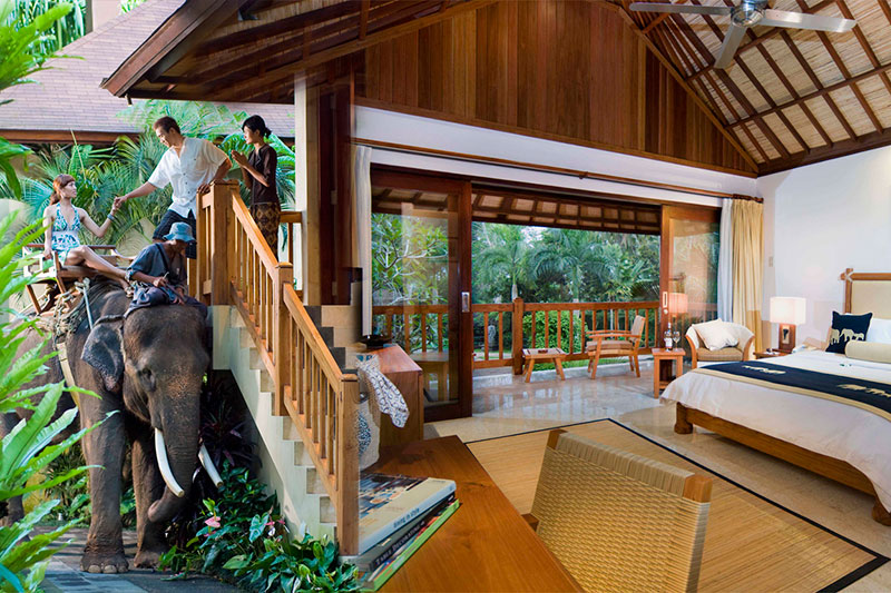 Elephant Safari Park & Lodge