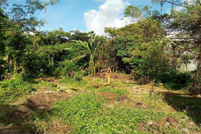 Small Freehold Plot in Kerobokan